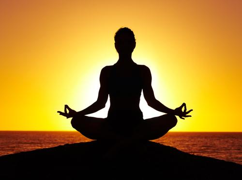 Meditation, Yoga, Herbalism, Vegetarian
